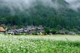美山 かやぶきの里 日本 京都府 南丹市の写真素材 [FYI03393357]