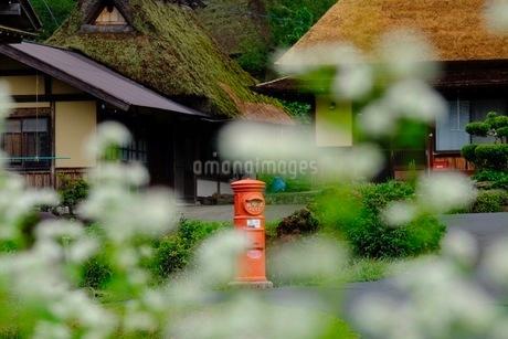 美山 かやぶきの里 日本 京都府 南丹市の写真素材 [FYI03393358]