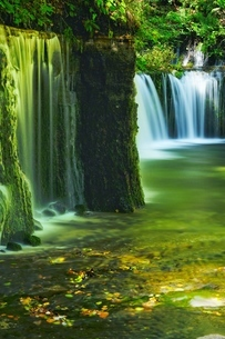 白糸の滝 日本 長野県 軽井沢町の写真素材 [FYI03393363]