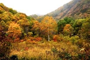 鎌池 日本 長野県 小谷村の写真素材 [FYI03393402]
