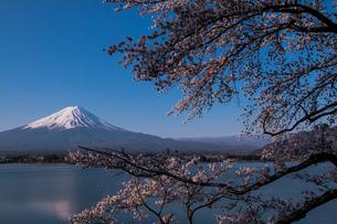 長崎公園 日本 山梨県 富士河口湖町の写真素材 [FYI03393485]