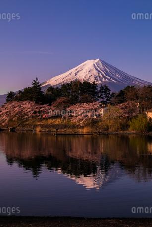 河口湖 日本 山梨県 富士河口湖町の写真素材 [FYI03393486]