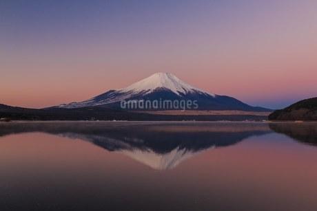 山中湖きらら 日本 山梨県 山中湖村の写真素材 [FYI03393492]