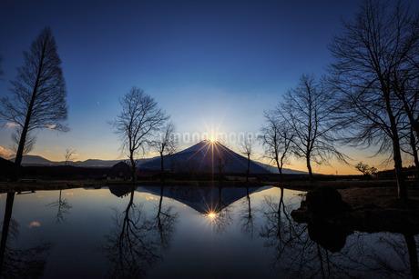 ふもとっぱらキャンプ場 日本 静岡県 富士宮市の写真素材 [FYI03393495]