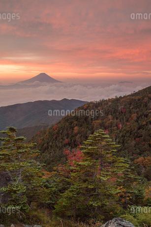 国師ヶ岳 日本 山梨県 山梨市の写真素材 [FYI03393502]