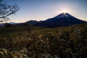 竜ヶ岳 の写真素材 [FYI03393511]
