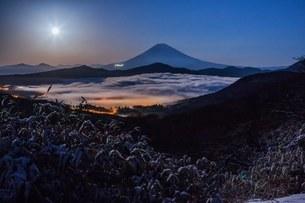 大観山 日本 神奈川県 箱根町の写真素材 [FYI03393521]