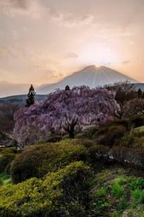 冨士霊園 日本 静岡県 小山町の写真素材 [FYI03393537]