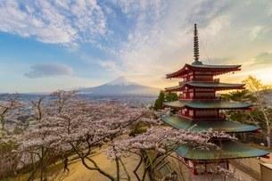 新倉山浅間公園 の写真素材 [FYI03393539]