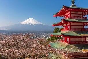 新倉山浅間公園 日本 山梨県 富士吉田市の写真素材 [FYI03393543]