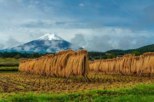 農村公園 日本 山梨県 富士吉田市の写真素材 [FYI03393565]