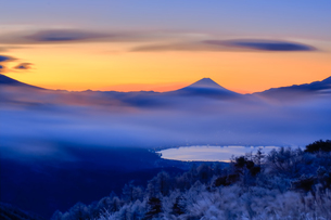 高ボッチ高原より望む富士山の写真素材 [FYI03393573]