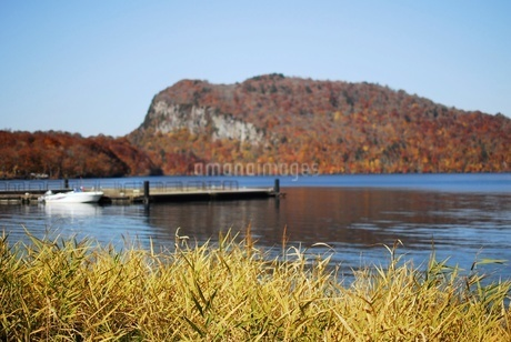 十和田湖の東湖エリア、うたるべ桟橋から御倉半島の紅葉の写真素材 [FYI03393852]