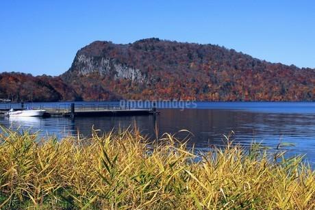 十和田湖の東湖エリア、うたるべ桟橋から御倉半島の紅葉の写真素材 [FYI03393853]