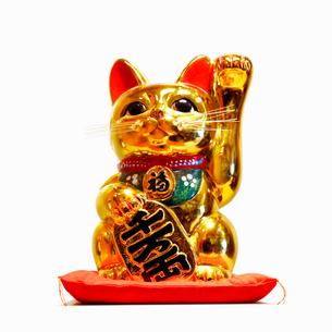 金色の招き猫の写真素材 [FYI03394313]
