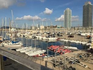 スペインの港の朝の写真素材 [FYI03394375]
