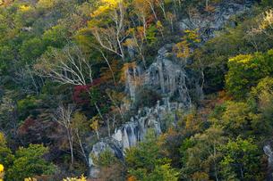 崖の紅葉の写真素材 [FYI03394526]