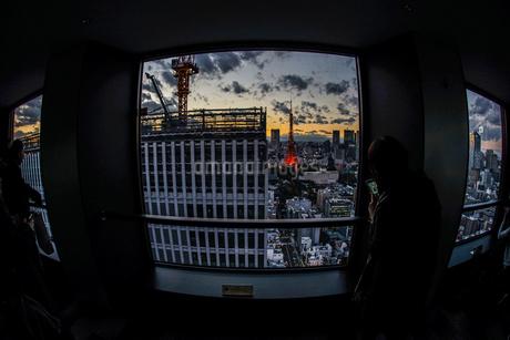 高層ビルの建築現場の写真素材 [FYI03394550]