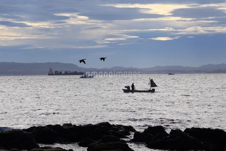 早朝の漁の写真素材 [FYI03394757]