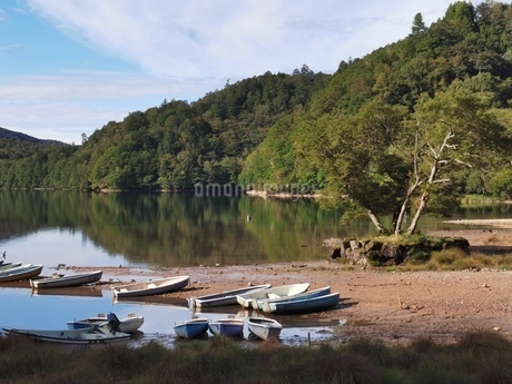湖景色の写真素材 [FYI03394867]