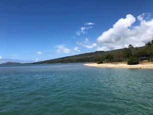ハワイの海辺の写真素材 [FYI03395087]