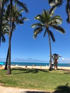 ハワイのビーチの写真素材 [FYI03395091]
