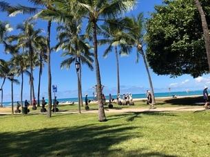 ハワイのビーチの写真素材 [FYI03395092]