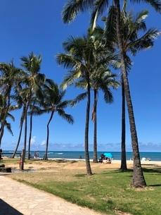 ハワイのビーチサイドの写真素材 [FYI03395093]