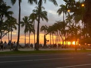 夕日の写真素材 [FYI03395103]