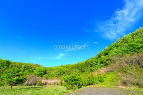 新緑の山と青空の写真素材 [FYI03395274]