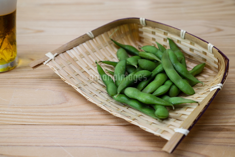 枝豆の写真素材 [FYI03395370]