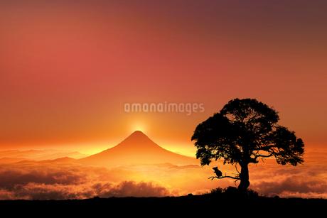 富士山の日の出とネズミのシルエットのイラスト素材 [FYI03395484]