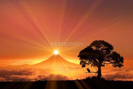 富士山の日の出とネズミのシルエットのイラスト素材 [FYI03395485]