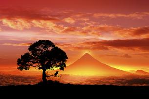 富士山の日の出とネズミのシルエットのイラスト素材 [FYI03395490]