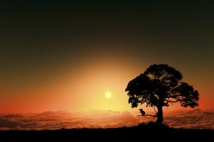 日の出とネズミのシルエットのイラスト素材 [FYI03395495]