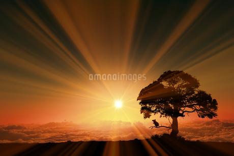 日の出とネズミのシルエットのイラスト素材 [FYI03395496]
