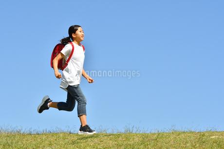 青空で走る女の子(ランドセル)の写真素材 [FYI03395542]