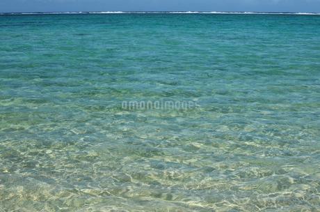 エメラルドグリーンの遠浅の海の写真素材 [FYI03395664]