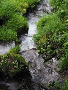 小川の写真素材 [FYI03395776]