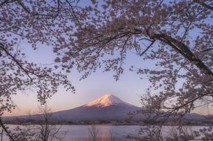 河口湖 日本 山梨県 富士河口湖町の写真素材 [FYI03395965]