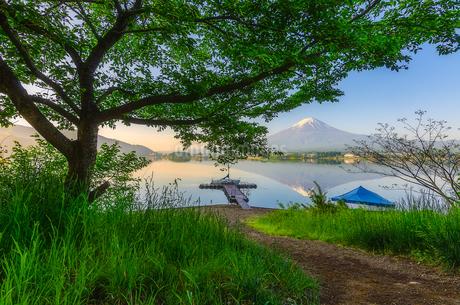 河口湖 日本 山梨県 富士河口湖町の写真素材 [FYI03395967]