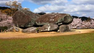 4月 桜の石舞台古墳  -飛鳥の古代石造物-の写真素材 [FYI03396020]