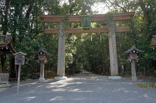 4月 三輪明神 大神(おおみわ)神社の写真素材 [FYI03396290]