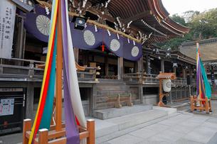 4月 三輪明神 大神(おおみわ)神社の写真素材 [FYI03396292]