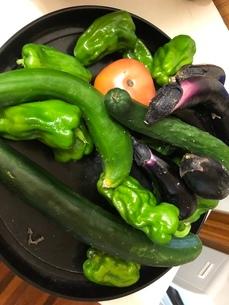 夏野菜の写真素材 [FYI03396371]