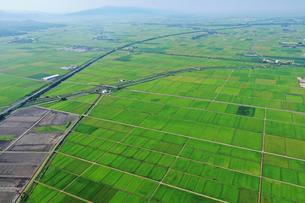 新潟県の田園風景の写真素材 [FYI03396838]