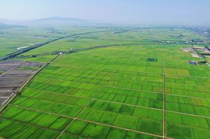新潟県の田園風景の空撮の写真素材 [FYI03396840]