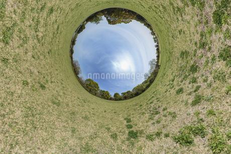 緑の丸い世界の写真素材 [FYI03396870]