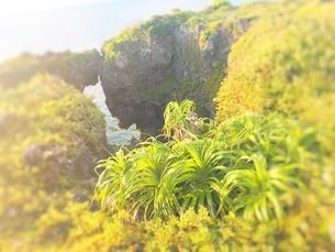 海の景色の写真素材 [FYI03397204]