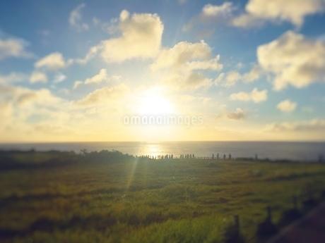 夕日の写真素材 [FYI03397208]